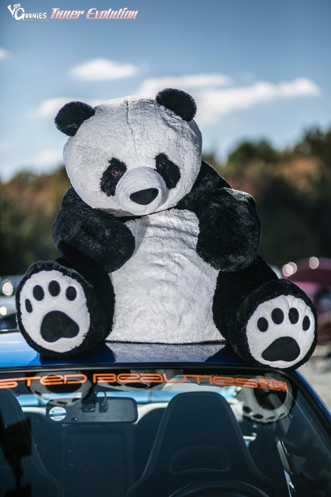 PandaJunction-159