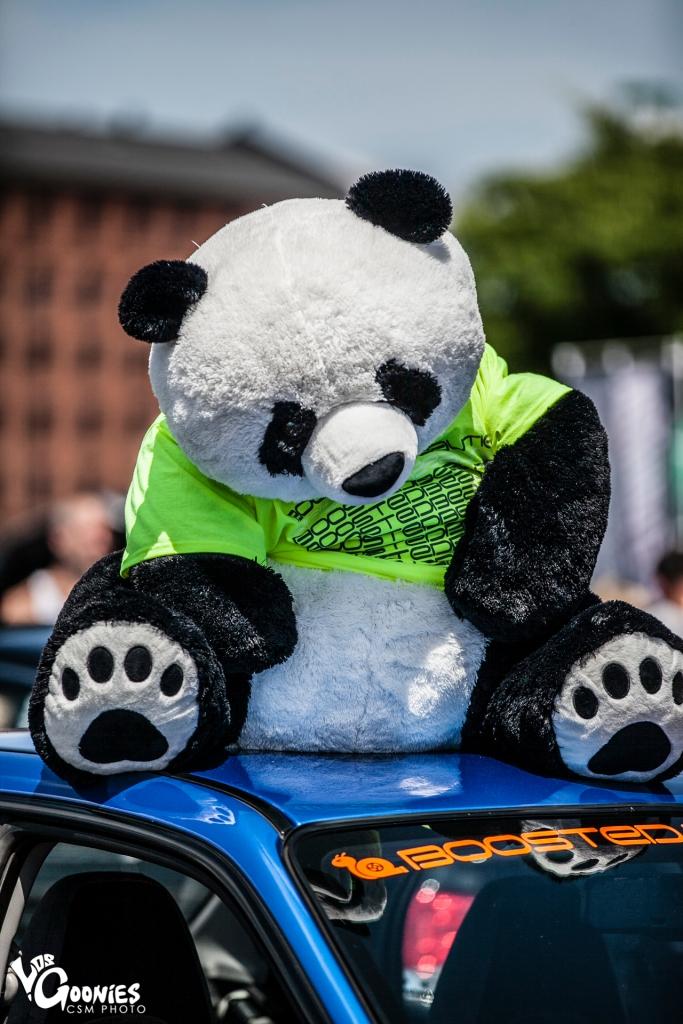 Panda-119